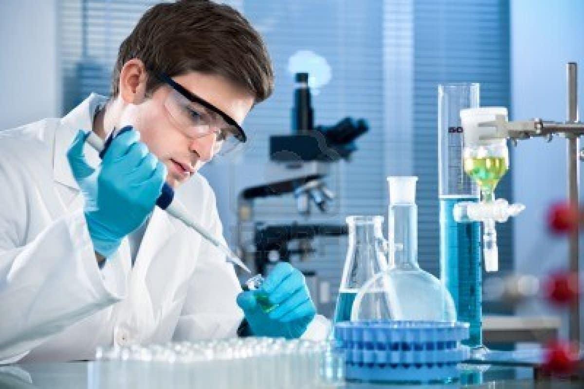 MSc Chemistry Research Fellow Job @ NEHU