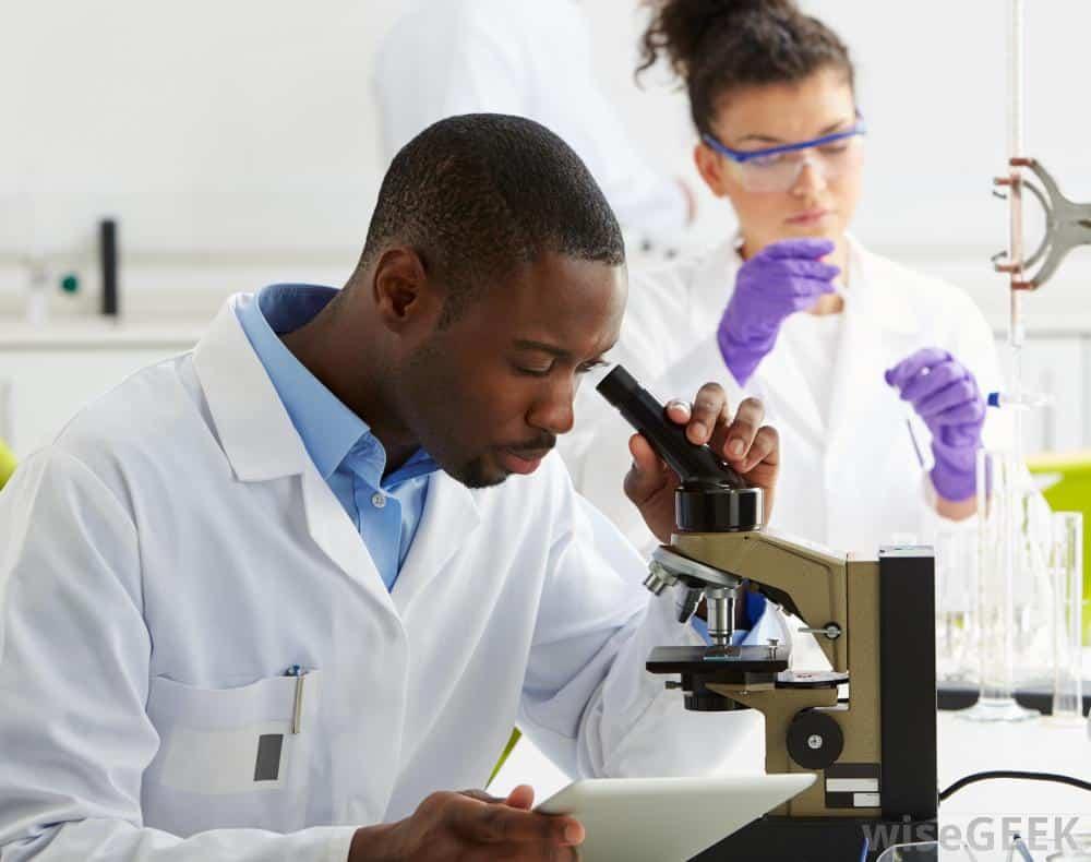 Food Scientist Jobs Canada