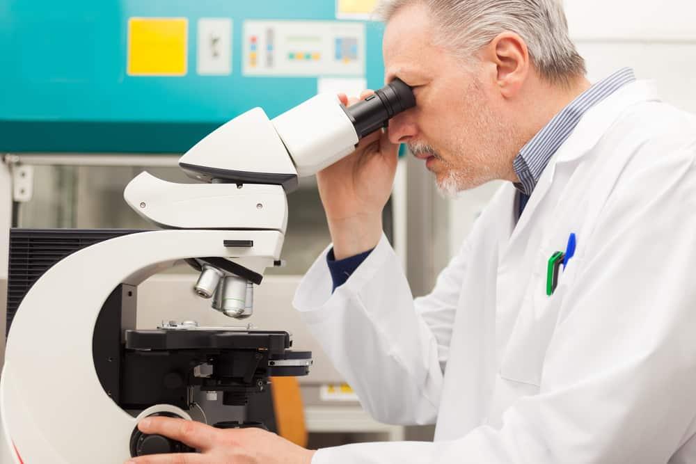 Phd Chemistry Research Scientist Jobs @ Syngenta