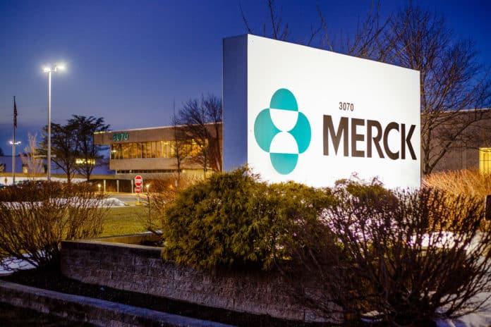 Merck Pharma Job Opening - Business Executive Post